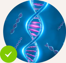 Aids DNA Repair and Other Metabolic Processes