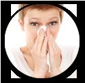 probiotic improved immune function
