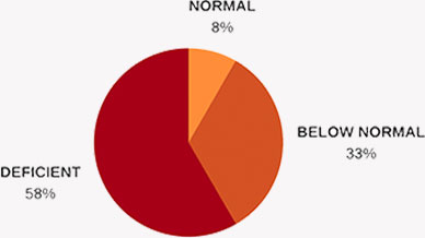 diagram of percent quantity of deficient(58%), normal(8%) and below normal(33%)